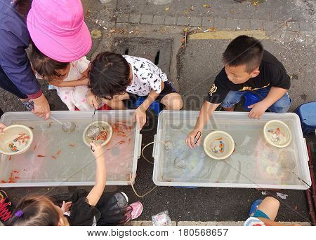 Young Children Try To Catch Small Goldfish