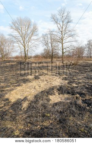 Burnt Land