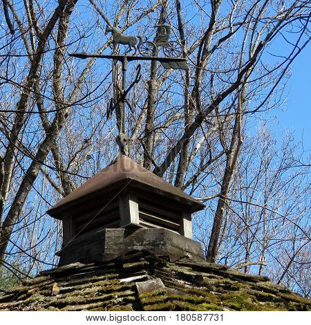 The weather vane in Mclean USA March 22 2017
