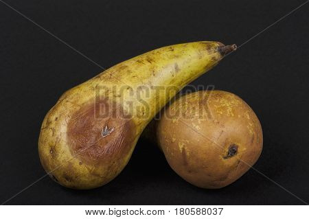 still life with rotten pears, black isolated closeup