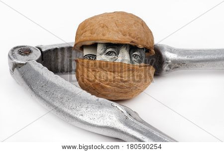 a nutcracker and one hundred dollars inside a walnut, white isolated closeup