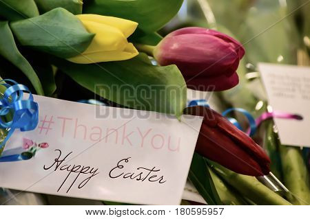 Happy Easter greetings Thank You Card for social share image for friends or followers with colorful tulips flowers bouquet background poster with hashtag #thankyou