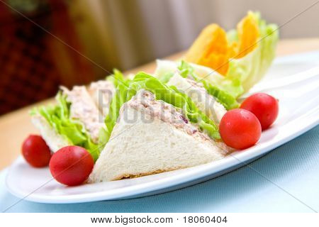 Healthy plate of tuna sandwich served with crisp, salad and cherry tomatoes