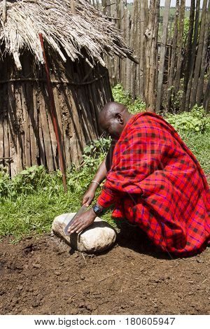 Chief In Livestock Krall In Maasi Village, Ngorongoro Conservationa Area, Tanzania