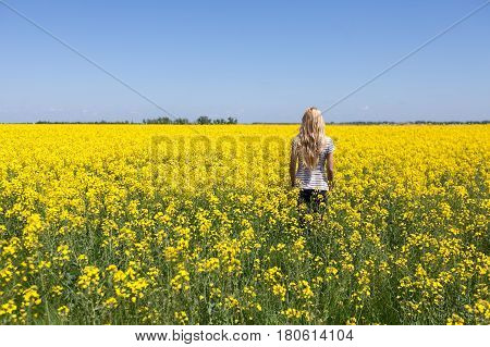 Rapeseed field. Blooming colza field. Beautiful girl in the flowered yellow field. Rapes on the field in summer. Summer concept. agriculture concept. empty space for the text.