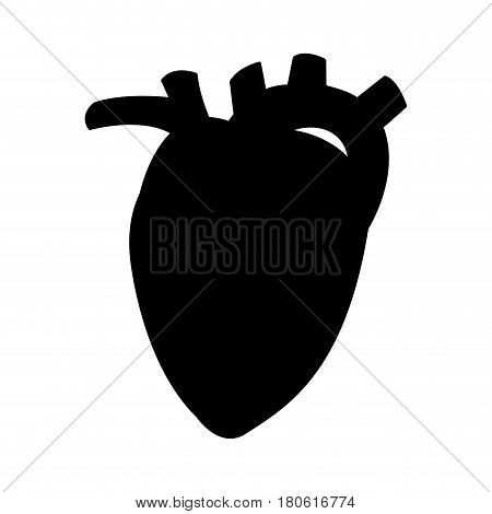 human heart icon image vector illustration design  black silhouette