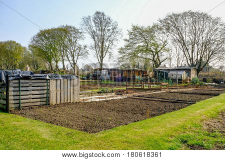allotment in springtime with newly prepared plot and new growth.