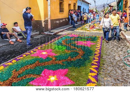 Antigua, Guatemala - March 26 2017: Locals make dyed sawdust Lent procession carpet in colonial town with most famous Holy Week celebrations in Latin America.
