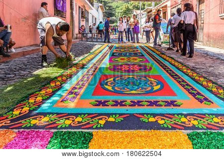 Antigua, Guatemala - March 26 2017: Locals make dyed sawdust Lent procession carpets in colonial town with most famous Holy Week celebrations in Latin America.