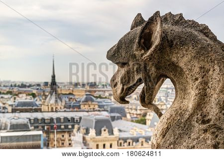 Chimera (gargoyle) of the Cathedral of Notre Dame de Paris overlooking Paris, France