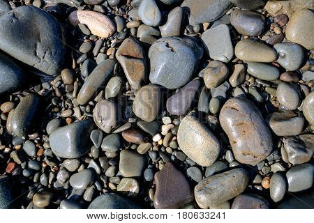 Assorted pebbles and stones on a pebble strewn beach