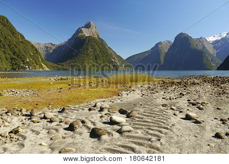 Milford fjord. Mountains and the sea on the South Island of New Zealand
