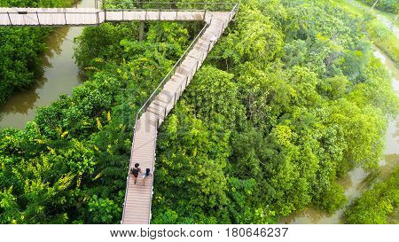 people of man and girl in top view walk at wooden sky walkway in forest with trees and river at the morning sunrise.(aerial forrest view)