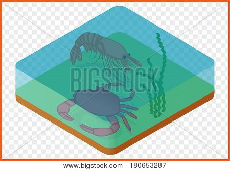 Crab and shrimp under water isolated on white background. Marine creatures isometric flat vector 3d illustration