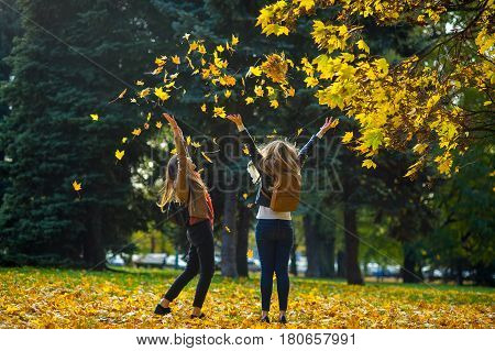 Mellow autumn. Two cheerful girls are students walk in the autumn park. The lawn in the park is completely covered with yellow leaves. Girlfriends throw dry yellow leaves up and rejoice.
