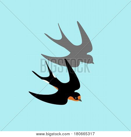 swallow vector illustration style Flat set black silhouette