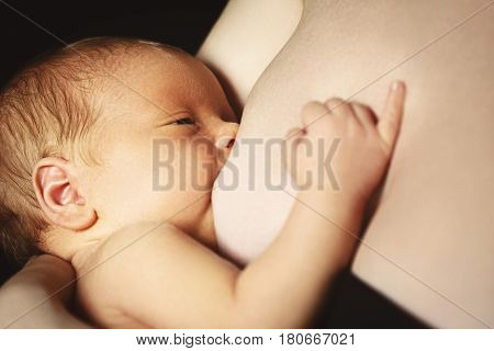 breast-feeding. The mother feeds newborn baby with breast