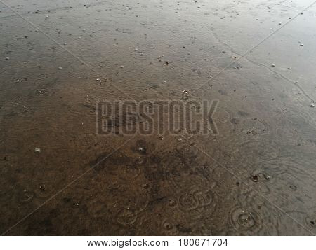 Detail water drop on wet dirty ground in rainy day