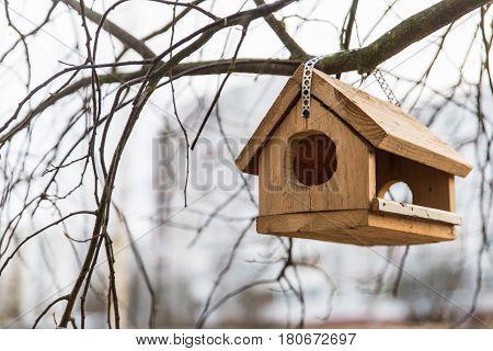 birdhouse, nature, pets, bird, color, single, object, animal, tree