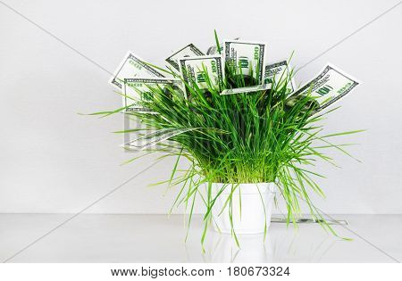 Money and grass. Hundred dollar bills in a pot with green grass. Fake money. Business concept.