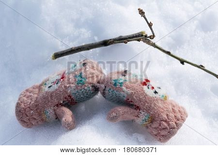 Mitten lying on the snow. Nearby is a branch from the tree. Knitted mittens with pattern.