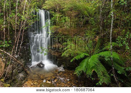 O' Grady's Falls near Hobart. Rainforest and waterfall in the southern region of Tasmania near the city of Hobart. Tasmania, Australia.