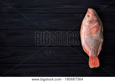 Red tilapia fish on dark blue wooden background. Top view