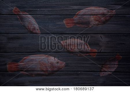 Abstract dark blue wooden background with red tilapia fish silhouette on it. Top view