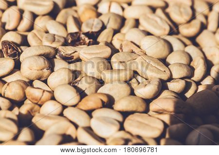 Background natural dried beans coffee bean. full frame