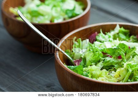 A Dish Of Fresh Salad Frisse, Romano And Radiccio With Olive Oil, Salt And Freshly Ground Percec In