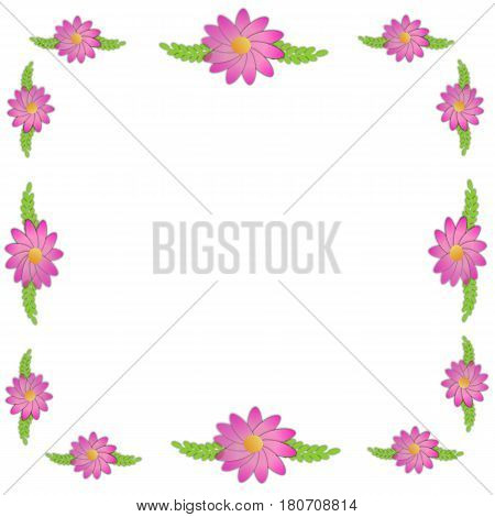 Spring flowers with green leaves on white background
