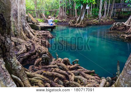 Hipster woman sitting on Wooden bridge to the jungle Tha pom mangrove forest Emerald Pool in mangrove forest at Krabi in Thailand. Beautiful women used smartphone take a picture of emerald pool.