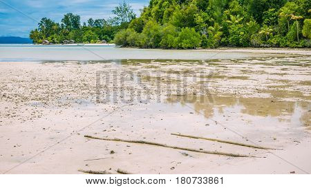 Coastline during low tide in front of Kri Island. Raja Ampat, Indonesia, West Papua.