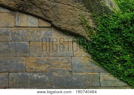 The Old Stone Wall And Stonework With Green Ivy