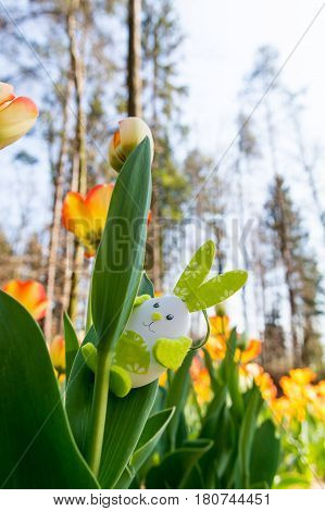 Cute bunny toy hidding among tulips. Easter time concept.