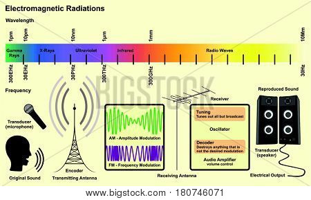 Electromagnetic Spectrum Sources infographic diagram with radiations of gamma ray xray ultraviolet infrared radio waves wavelength frequency examples for communication science education