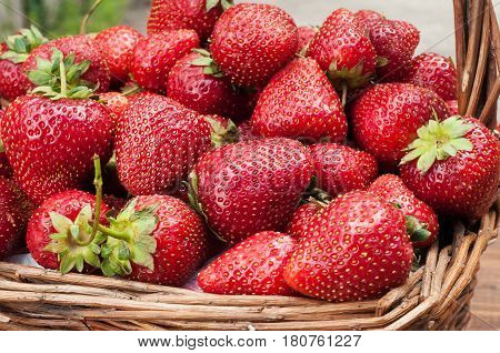 Fresh strawberries in a straw basket. Strawberry