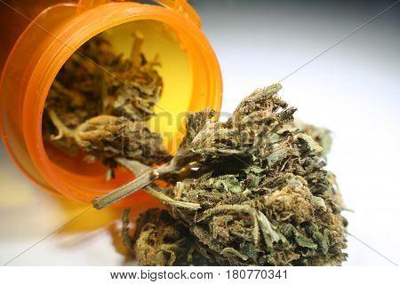 Alternative Medicine Buds  Close Up High Quality
