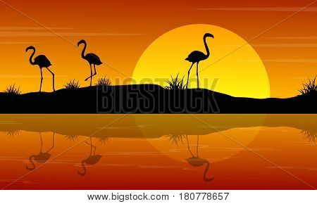 Vector illustration of flamingo at sunset scenery collection