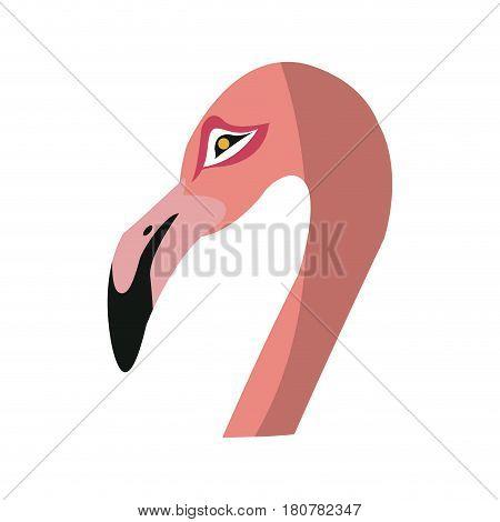 pink flamingo bird icon over white background. colorful design. vector illustraiton