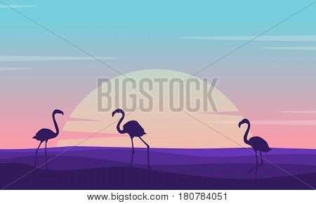 At sunrise flamingo lined on the hill scenery vector illustration