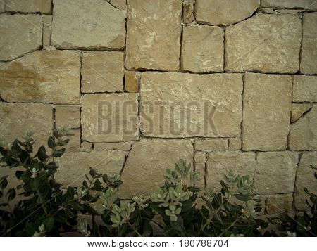 Masonry, stonework background with bushes on the bottom, classic stone texture suitable for all artwork, old stone wall.