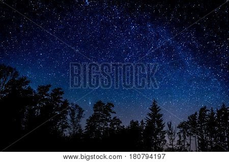 Night Sky Over Rural Landscape