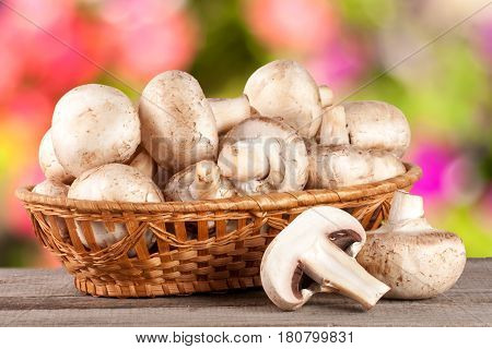 Champignon mushrooms in a wicker basket on wooden table with blurry garden background.