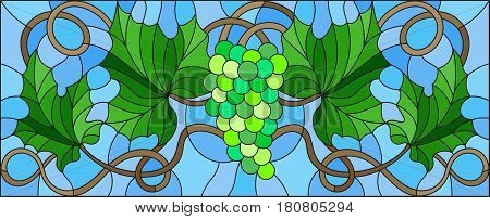 The illustration in stained glass style painting with a bunch of green grapes and leaves on blue background