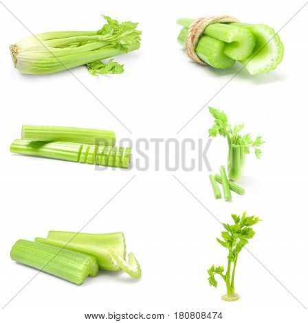 Set of celeriac isolated on a white background cutout