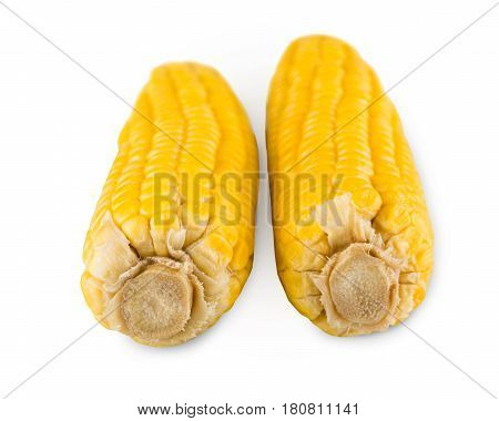 Yellow corncobs isolated on white background. Closeup image of corn vegetable, healthy natural organic food