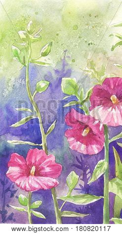 Mallow painting suitable for poster postcard wallpaper. Pink flowers.
