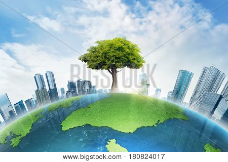 The Big Tree Growing Between Modern Building