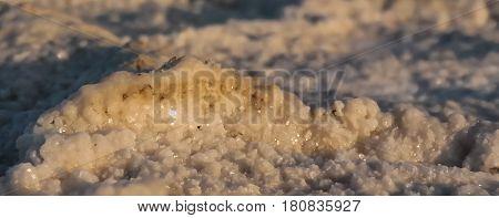 Salt cristal from the Assal lake Djibouti